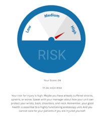 Individual Risk Assesment Preview